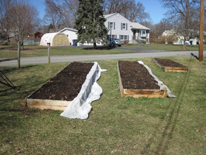 Raised Beds Built in Sunniest Spot