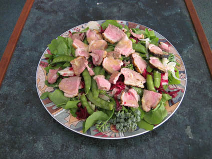 Spring Citrus Duck Salad