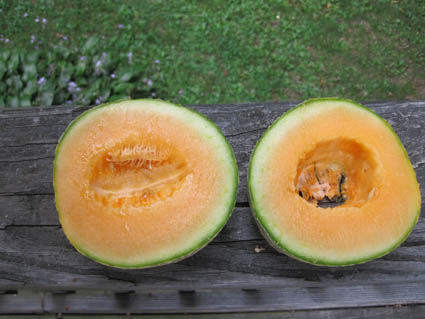 Halved Cantaloupe