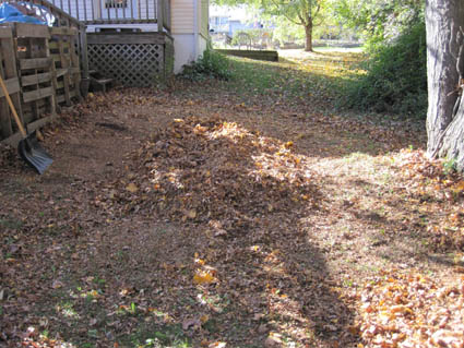 Leaf Pile After Mowing